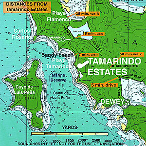 The                           Tamarindo location