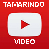 Tamarindo                   Estates video
