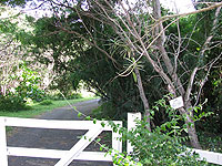 Trail to beach area